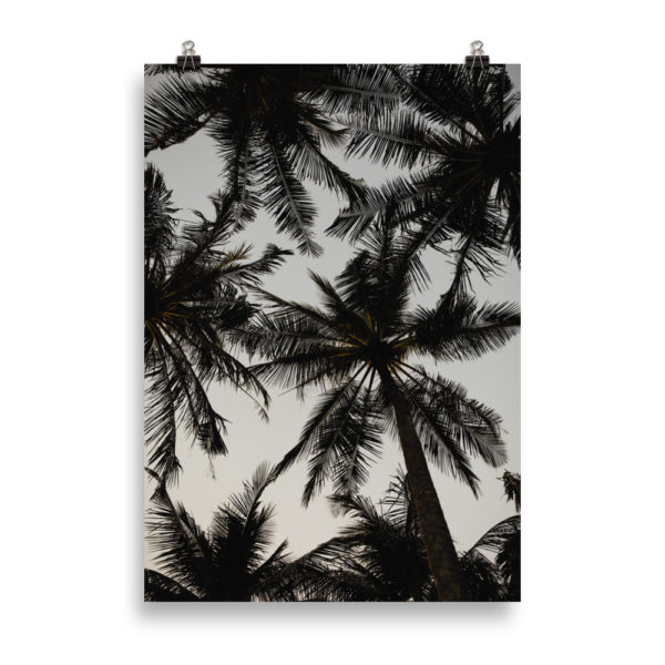 Palm Tree Love by Candima