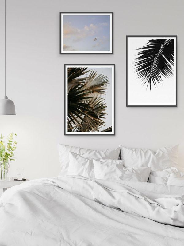 Palm Tree Love 2