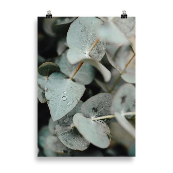 Pastel Leaf by Candima