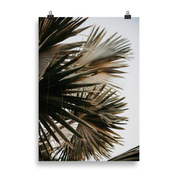 Palm Tree Love 2 by Candima