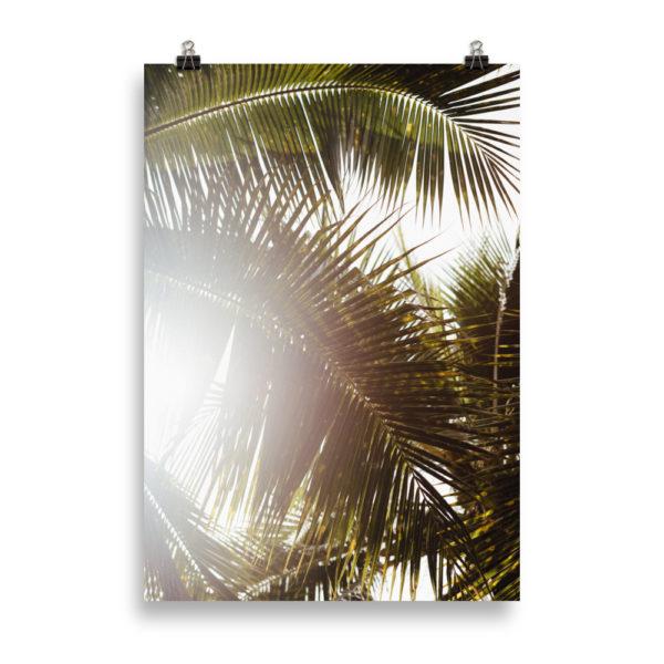 Tropical Feelings 2 by Candima