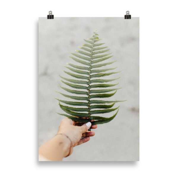 Fern Leaves in Hand by Candima