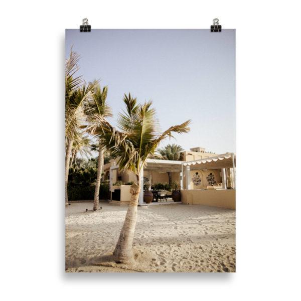 Palm Tree Landscape by Candima