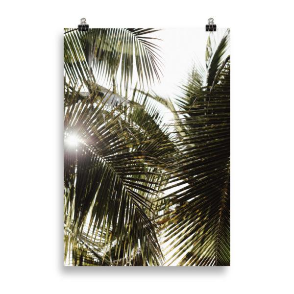 Tropical Feelings by Candima